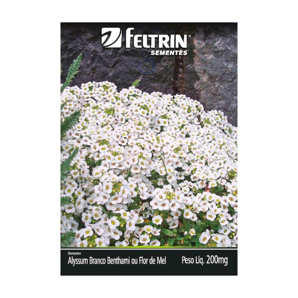 FELTRIN ALYSSUM BRANCO CX20